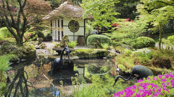 japanese-garden-in-spring-hp-image